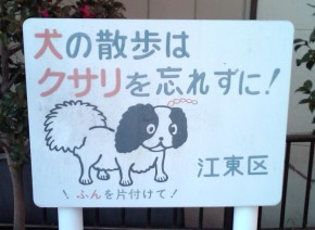 Unchained dog sign