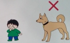 Funny japanese street signs dog 53
