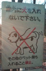Japan sign - spotted x dog