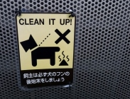 dog signs caught in the act Japan 6