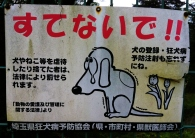 dog signs caught in the act Japan 7